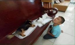 Chú chó hờn cả thế giới vì bị cướp mất bản lĩnh phái mạnh khiến 'con sen' vật vã đau khổ