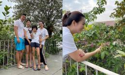 Bình Minh khoe ảnh cả gia đình, nhưng đôi dép tổ ong lại khiến fan chú ý