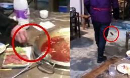Khách kinh hãi khi đang ăn lẩu thì chuột xuất hiện nhảy 'tung tăng' trên bàn