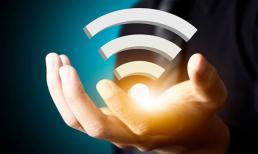 Suy giảm trí nhớ, vô sinh và những tác hại của sóng wifi không phải ai cũng biết