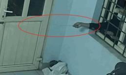 Tên trộm chuyên nghiệp, dùng móc sắt mở cửa, đột nhập cuỗm 2 điện thoại chỉ trong chốc lát