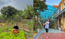 Vườn rau sạch, nhiều cây ăn quả của gia đình Hoa hậu Đỗ Thị Hà ở Thanh Hóa