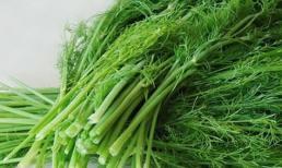 Phụ nữ lo nhanh già thì ăn 3 loại thực phẩm này giúp thanh nhiệt giải độc, làm đẹp da, xóa mờ nếp nhăn
