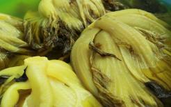 Bệnh nhân gút thường xuyên ăn dưa cải, liệu acid uric có cao hơn không? Hãy xem các chuyên gia y tế nói gì