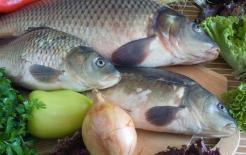 """Không phải ai ăn cá nhiều cũng tốt! Nhắc nhở: """"3 người"""" này tốt nhất nên ăn ít cá"""