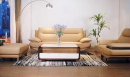 Cần lưu ý điều gì khi chọn bộ ghế sofa tiếp khách văn phòng nhỏ?