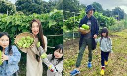 Dân mạng trầm trồ khi Lý Hải và bà xã Minh Hà sở hữu nông trại hàng trăm mét vuông tại Đà Lạt