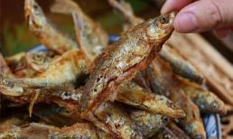 Hướng dẫn các bạn cách chiên cá nhỏ, đúng phương pháp, đầu cá và xương cá giòn, không tanh, thật là ngon