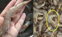 Khi mua tôm nên chọn con cong hay con thẳng? Ông chủ hải sản nói, hãy bắt đầu với tôm tươi, đừng mua một cách ngẫu nhiên