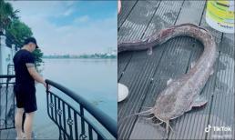 Vũ Khắc Tiệp chia sẻ khoảnh khắc thả cá phóng sinh nhưng khiến cư dân mạng tranh cãi gay gắt