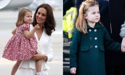 Công chúa Charlotte trở thành người trẻ tuổi giàu nhất trong hoàng gia với giá trị ước tính khoảng hơn 112 nghìn tỷ đồng