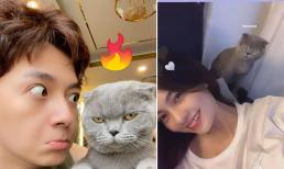 Ngô Kiến Huy và hot girl Lâm Đồng lộ loạt 'hint' hẹn hò, người trong cuộc có động thái gì?