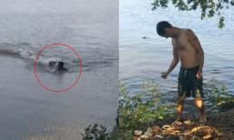 Bất chấp cảnh báo vẫn nhảy xuống hồ bơi, người đàn ông bị cá sấu truy đuổi rồi tấn công kinh hoàng