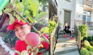 Nhật Tinh Anh hé lộ khu vườn bên ngoài ngôi nhà triệu USD ở Mỹ