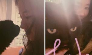 'Thần tiên tỷ tỷ' Lưu Diệc Phi hiện đúng thân phận con sen khi bị boss mèo 'quạu'