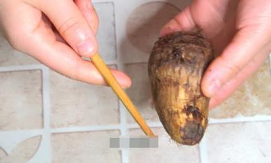 Hóa ra việc gọt vỏ khoai môn chỉ đơn giản bằng một chiếc đũa! Thật tiện lợi và nhanh chóng