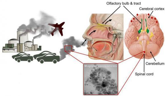 Ô nhiễm không khí, chăm sóc sức khỏe, tác hại của ô nhiễm không khí