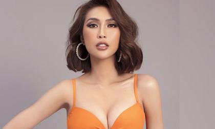 á hậu Tường Linh, sao Việt,  Hoa hậu Hoàn vũ 2019