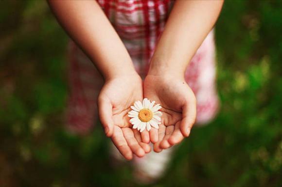 Bài học cuộc sống, Bài học thành công, Cuộc sống hạnh phúc