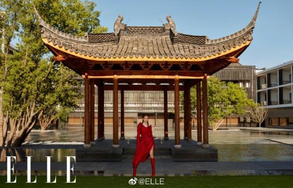 Dương Mịch,Dương Mịch và Lưu Khải Uy ly hôn,sao Hoa ngữ