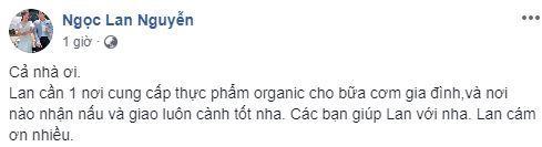 Ngọc Lan, Thanh Bình, sao việt