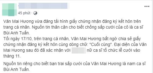 Văn Mai hương, bùi anh tuấn, sao Việt