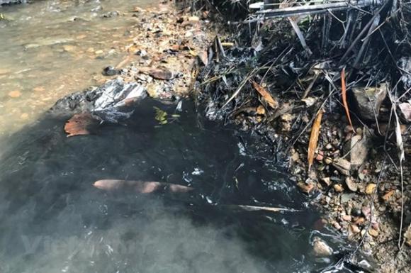 sông Đà, khởi tố, nước ô nhiễm, dầu thải, Hà Nội