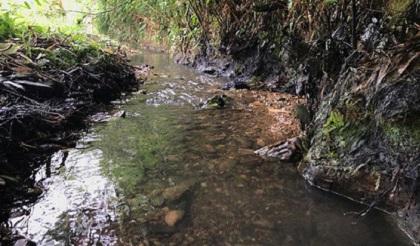nước sạch sông đà, bể nước sinh hoạt, chết ngạt, chết do rửa bể nước