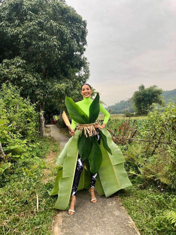 á hậu Hoàng Thùy, sao Việt