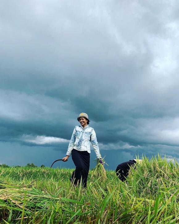 hoa hậu Phạm Hương, Hoa hậu Mia Phương Thuý, hoa hậu H'Hen Niê, hoa hậu Trần Tiểu Vy, sao Việt