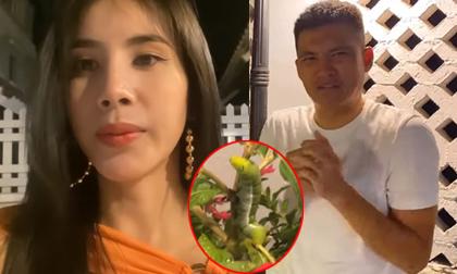 Hoàng Thùy, Hoa hậu Hoàn vũ 2019, Clip ngôi sao