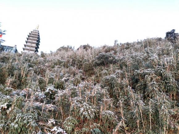 tuyết rơi, Sa Pa, Lào Cai, Fansipan
