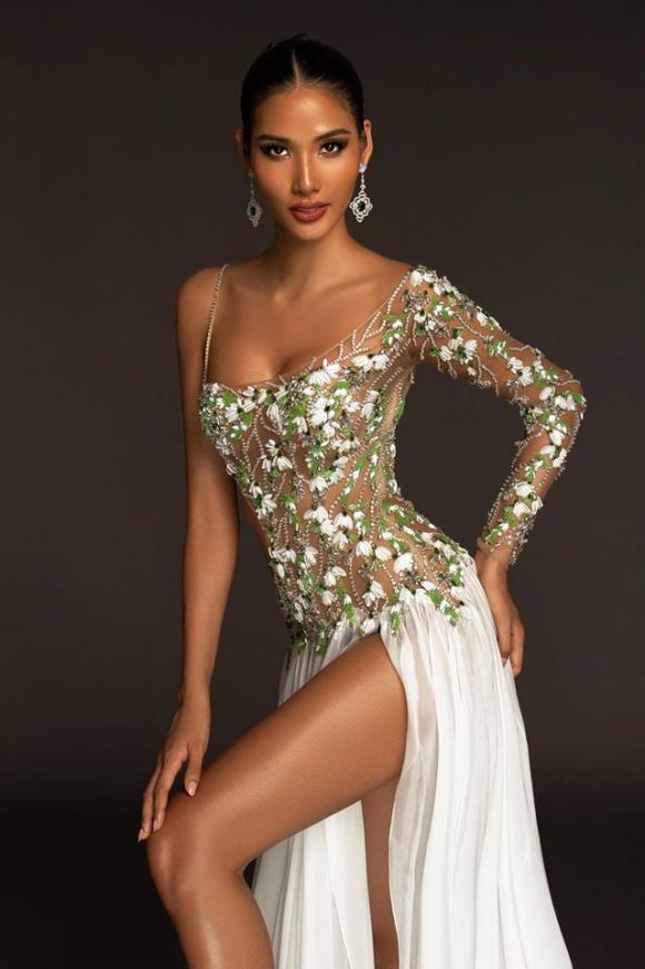 Hoàng Thùy, H'Hen Niê, Tân Hoa hậu Hoàn vũ thế giới