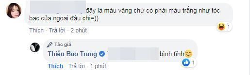 Thiều Bảo Trang, chị gái Thiều Bảo Trâm, sao Việt