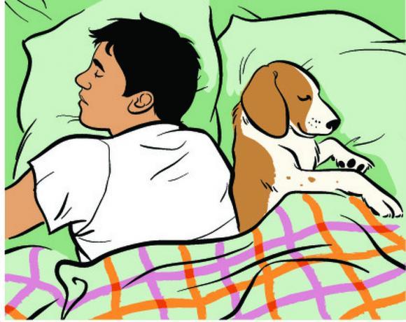 tư thế ngủ tốt cho sức khỏe, chăm sóc sức khỏe đúng cách, ngủ như thế nào tốt cho sức khỏe