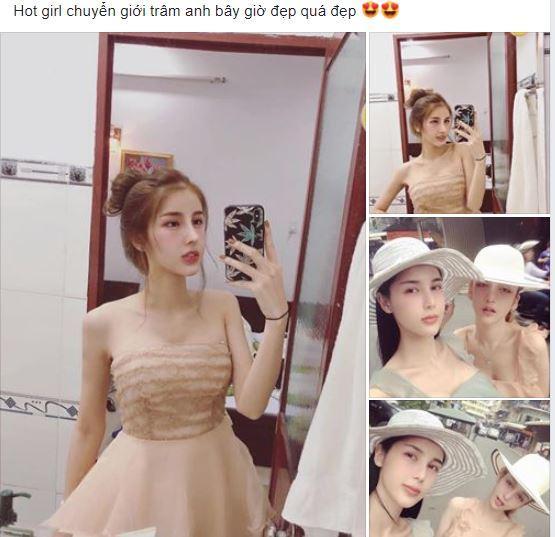 hot girl chuyển giới Trâm Anh, Trâm Anh, sao việt