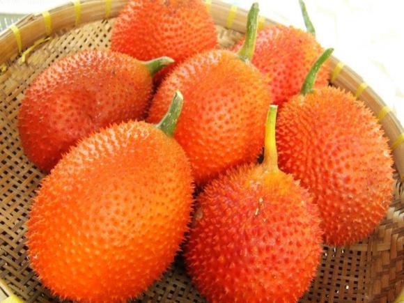 Ngoài 5 lợi ích, ăn gấc còn giúp chống ung thư và ức chế HIV