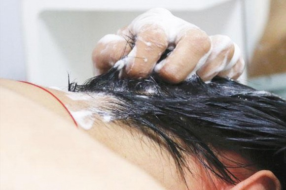 gội đầu, tóc dầu, tránh tóc dầu, tóc dầu nên làm gì,
