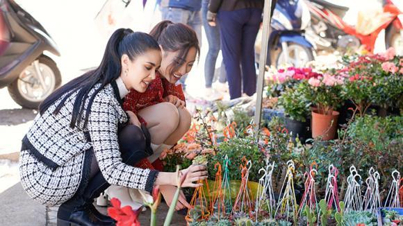 hoa hậu Lương Thuỳ Linh, Miss World 2013 Megan Young, Miss World Việt Nam 2019, Hoa hậu Thế giới Việt Nam 2019, sao Việt