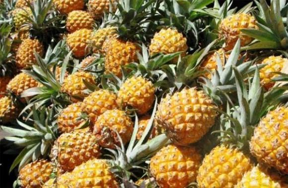 4 loại trái cây không nên cho trẻ ăn nhiều, đặc biệt là loại cuối cùng, có thể gây tử vong