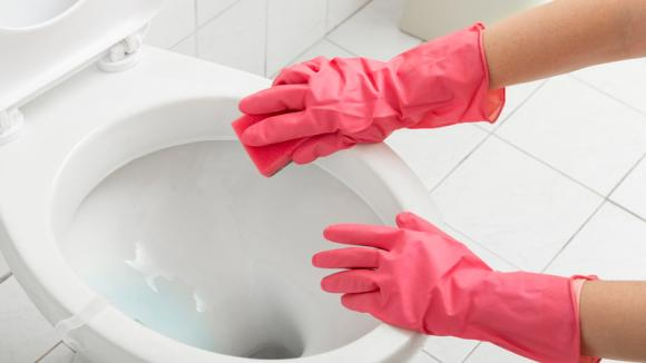 vệ sinh nhà, vi khuẩn, dịch bệnh