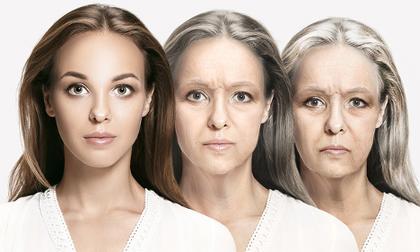 lão hóa, thời điểm lão hóa, chậm lão hóa, lão hóa da