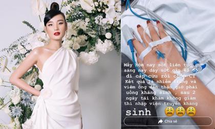 Lê Thúy, người mẫu Lê Thúy, sao Việt