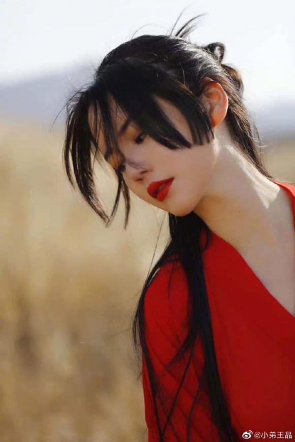 Tân Ỷ Thiên Đồ Long Ký,phim Hoa ngữ,Địch Lệ Nhiệt Ba