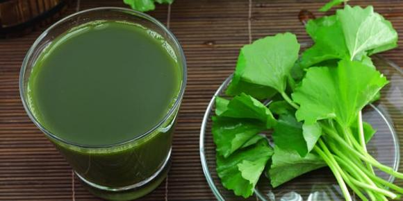 Nước rau má, ai không nên dùng rau má, dùng nước rau má đúng cách