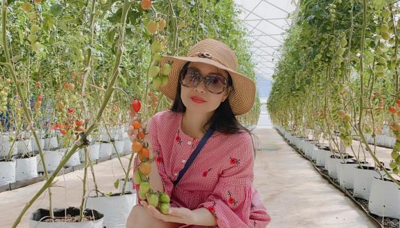 ca sĩ Cẩm Ly, Cẩm Ly, sao Việt
