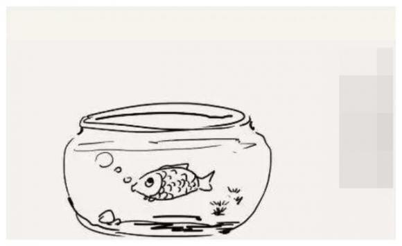 Trẻ càng nổi loạn, cha mẹ có thể thử 'quy tắc bể cá', hiệu quả hơn cả ngàn lời nói