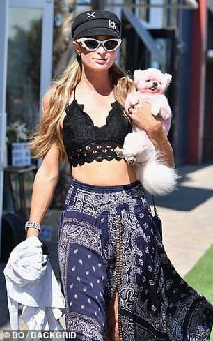 Paris Hilton, sao Hollywood, Covid-19