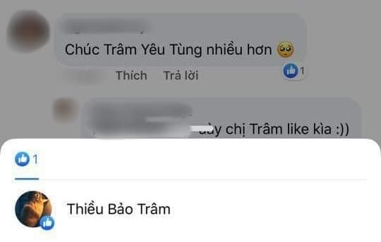 Thiều Bảo Trâm, Sơn Tùng M-TP, sao Việt