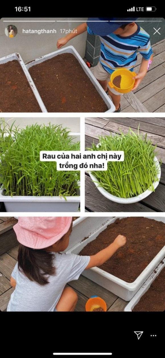 Tăng Thanh Hà, con hà tăng, sao Việt